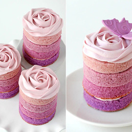 rose butterfly cake