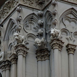 Gargoyles - St Mary's Cathedral Basilica of the Assumption
