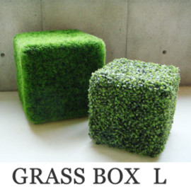 DETAIL - DETAIL GRASS BOX
