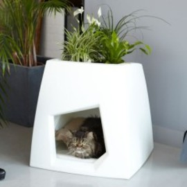 Pousse Creative - Cat House Planters