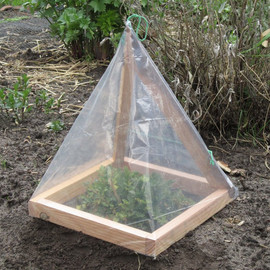 BordewijkFurniture - Micro Greenhouse
