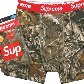 Supreme, Hanes - RealTree Boxer Brief