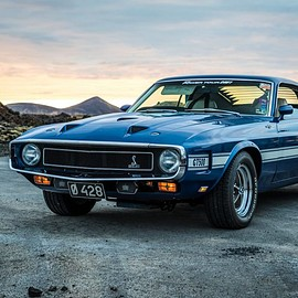 Ford - Shelby GT500KR