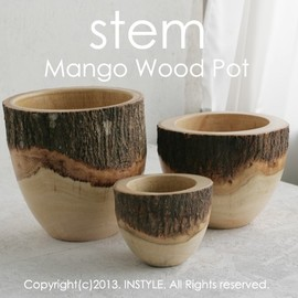 stem - Mango Wood Pot