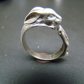 Cat Poison ring