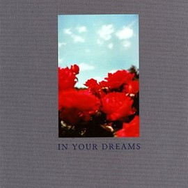 TERRI WEIFENBACH - In Your Dreams