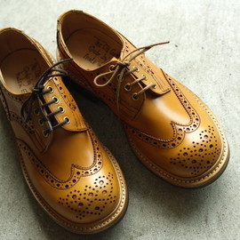 M 7457 Derby Brogue Shoes / Navy