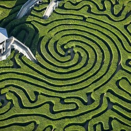 England - Maze at Longleat House in Wiltshire
