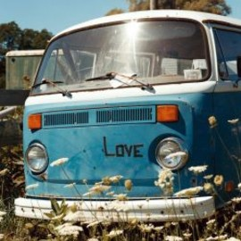 Michael Dweck - Love Bug (The End Montauk NY)