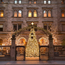 NewYork Palace Hotel - The Christmas tree