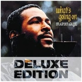 marvin gaye - What's Going on (Dlx) (Dig)
