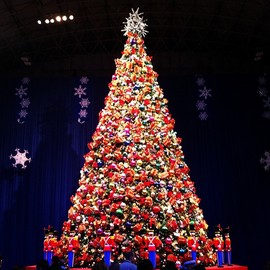 Navy Pier, Chicago - Christmas Tree
