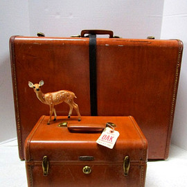 SAMSONITE - Vintage Samsonite Set Large Suitcase + Traincase