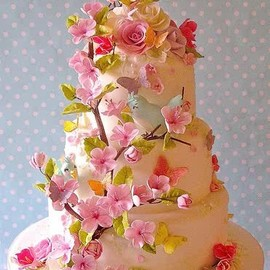 flower - sakura decorated cake