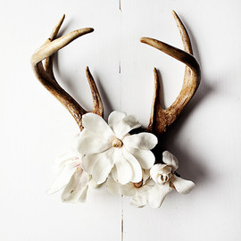 Kari Herer - antler no.6986
