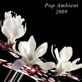 Various Artists - Pop Ambient 2009