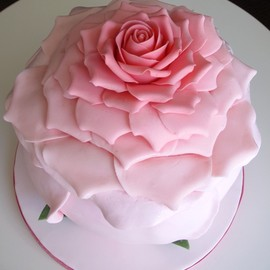 Francisca Neves - Pink Flower Cake
