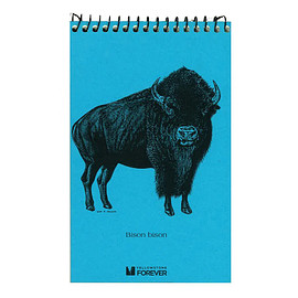 YELLOWSTONE FOREVER - Bison Explorer Notepad