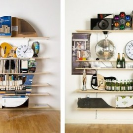 James Hopkins Vanitas skull Shelves