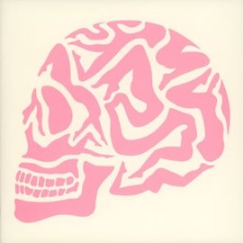 FANTASTIC PLASTIC MACHINE