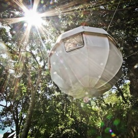 Cocoon Tree - Suspended Treehouse