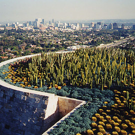 Getty Museum - Cactus Garden