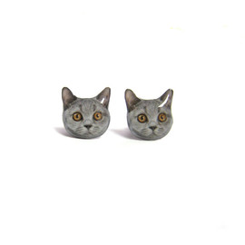 Faz Jewelry - faz-Grey-Short-hair-Kitten