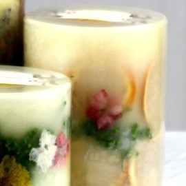 """Rosy Rings - Rosy Rings Nectarine & Gingerlily 5"""" Tall Mini Round Candle"""