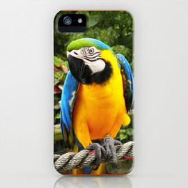 Exotic Macaw Parrot - iPhone & iPod Cases. Beautiful exotic Blue and Yellow Macaw Parrot コンゴウインコ