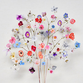 anne-ten-donkelaar-flower-constructions-designboom-10