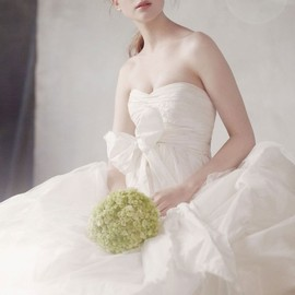 Organza Gown with Fern Embroidery and Net Overlay