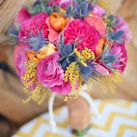 Summer Mimosa, Rose and Thistle