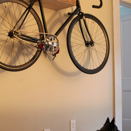 themodernproject - PINSTRIPe - Bike Shelf