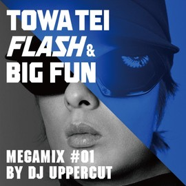 TOWA TEI - TOWA TEI FLASH & BIG FUN MEGAMIX #01 by DJ UPPERCUT