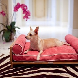Pet Lounge Studios - Bambú Daybed