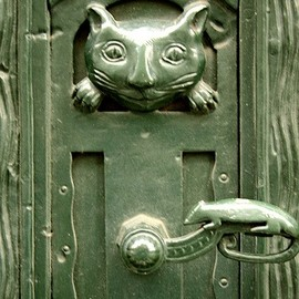 Cat & Mouse Door