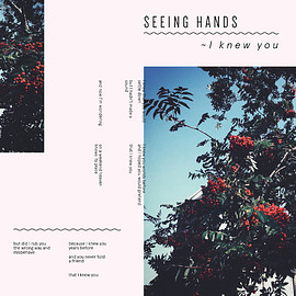 Seeing Hands - I Knew You