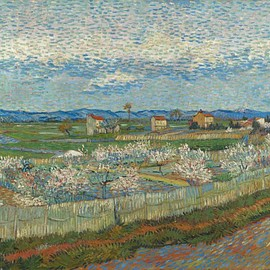 vincent van gogh - Peach Trees in Blossom 1889