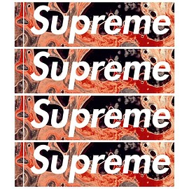 Supreme, Andres Serrano - Box Logo Sticker
