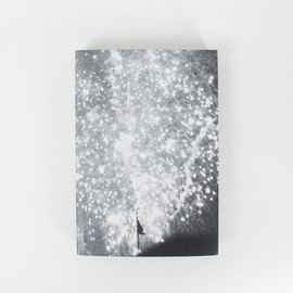 Pierre le Hors - Image of Firework Studies