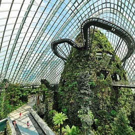 Singapore - Cloud Forest Dome Singapore