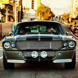 Ford - Shelby GT500 Eleanor