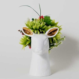 imm living - DOE VASE