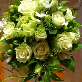 Flowers - White Green Roses