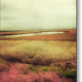 Fine Art America - Wide Open Spaces Metal Print By Amy Tyler