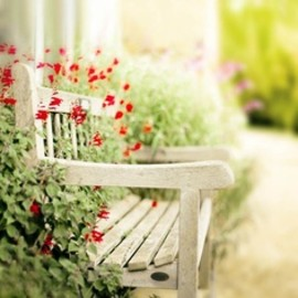 a lovely bench