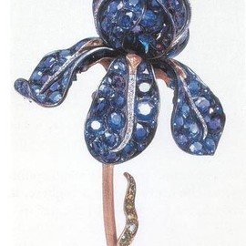 Tiffany & Co. - Iris Brooch.
