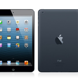 Apple - iPad mini  (Black & Slate)