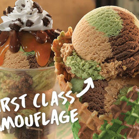 Baskin Robbins - baskin-robbins-first-class-camouflage-ice-cream