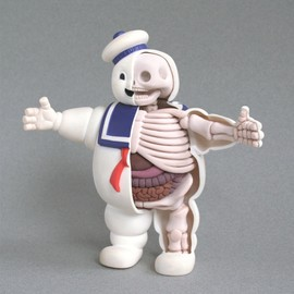 Lego Man Anatomical Sculpt